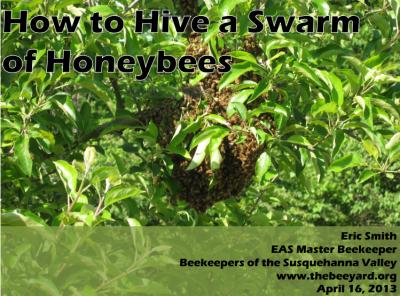 hive-a-swarm-slide0